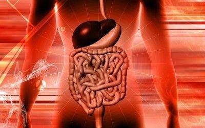 Whippleova choroba: příčiny, příznaky, diagnostika a léčba