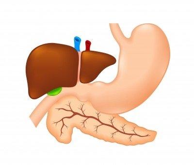 Zánět slinivky břišní: příčiny, příznaky, diagnostika a léčba