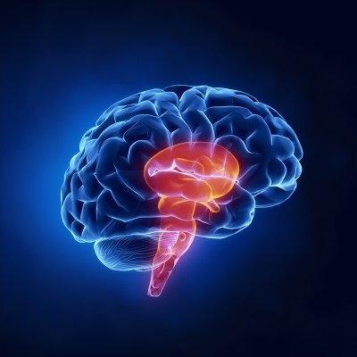 Syndrom uzamčení: příčiny, příznaky, diagnostika a léčba
