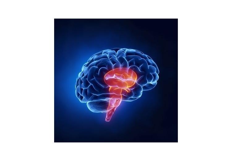 Moebiův syndrom: příčiny, příznaky, diagnostika a léčba