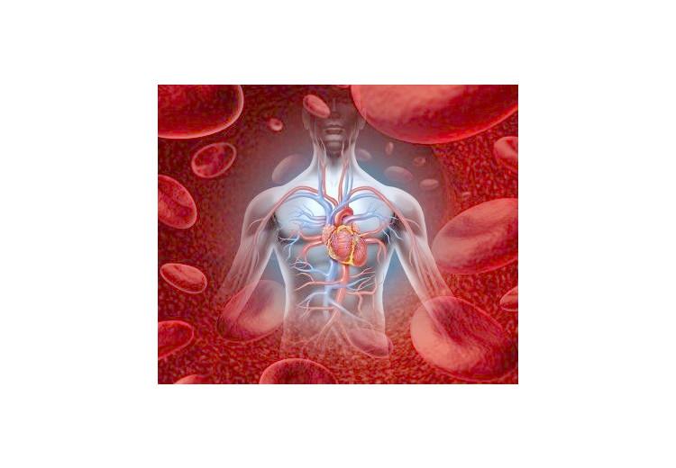 Ebsteinova anomálie: příčiny, příznaky, diagnostika a léčba