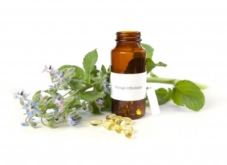 side effects and interactions of borage seed oil, Skeleton