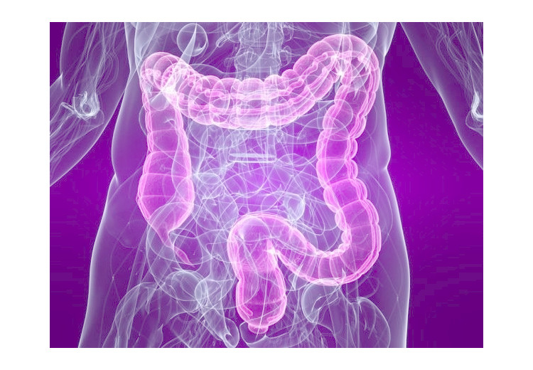 Syndrome du colon irritable: causes, symptômes, diagnostic et traitements