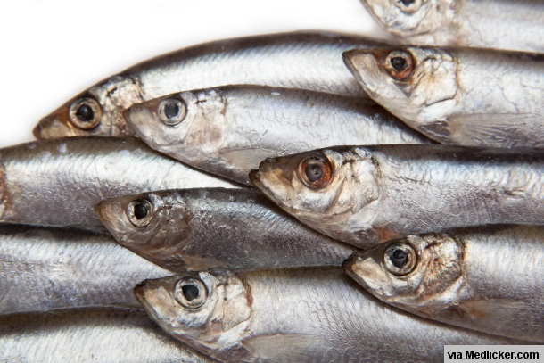 Oily-fish-sprouts