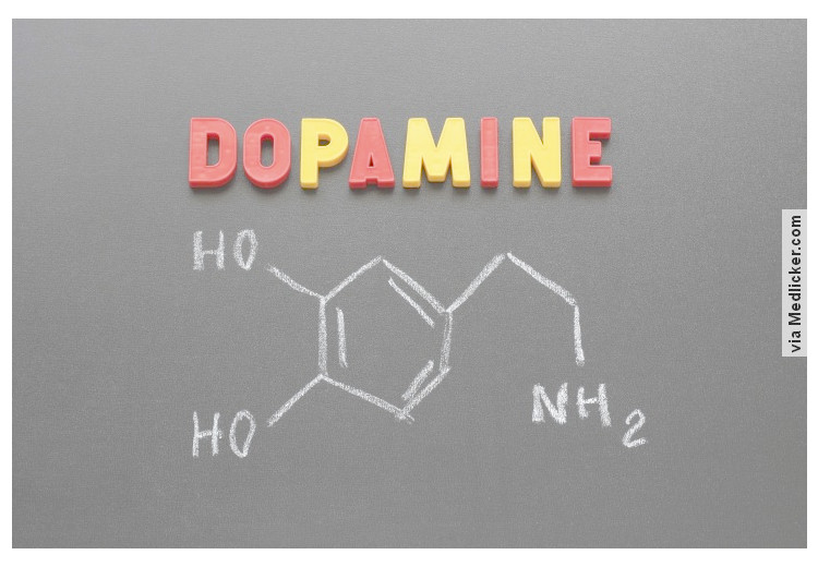 Low dopamine (e.g. dopamine deficiency): causes, symptoms, diagnosis and treatment options