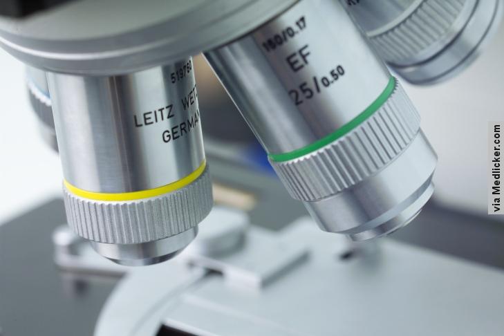 Biopsie jater