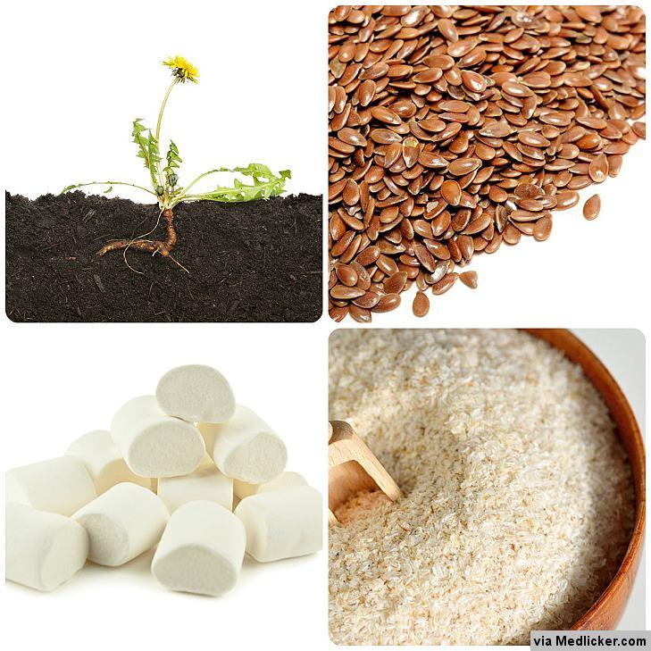 Herbal remedies for constipation (1) - Flaxseeds, Dandelion Root, Psyllium, Senna