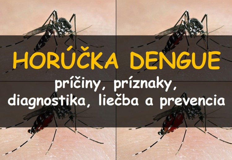 Horúčka Dengue