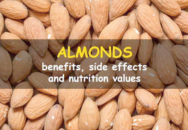 Health benefits of almonds & side effects of eating too many almonds
