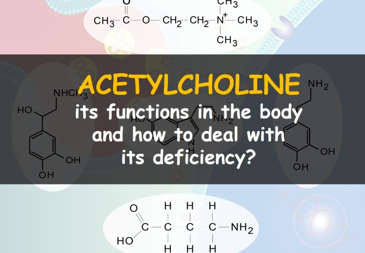 How to increase acetylcholine