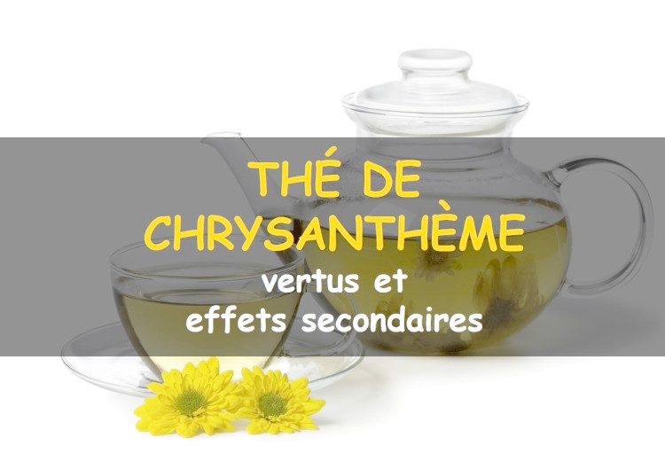 Les avantages (et effets secondaires) du thé de chrysanthème