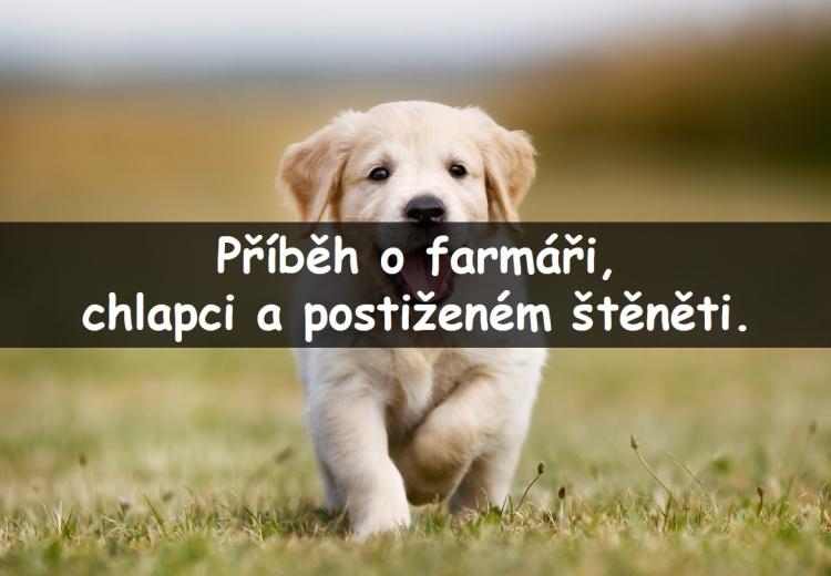 Farmář řekl chlapci, aby si nekupoval postiženého psa. A co na to chlapec? Jeho odpověď vás dostane...