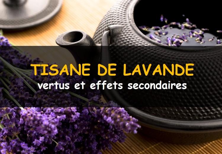 Tisane de lavande, ses vertus et effets secondaires