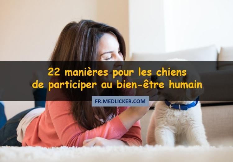 22 manières pour les chiens, de participer au bien-être humain