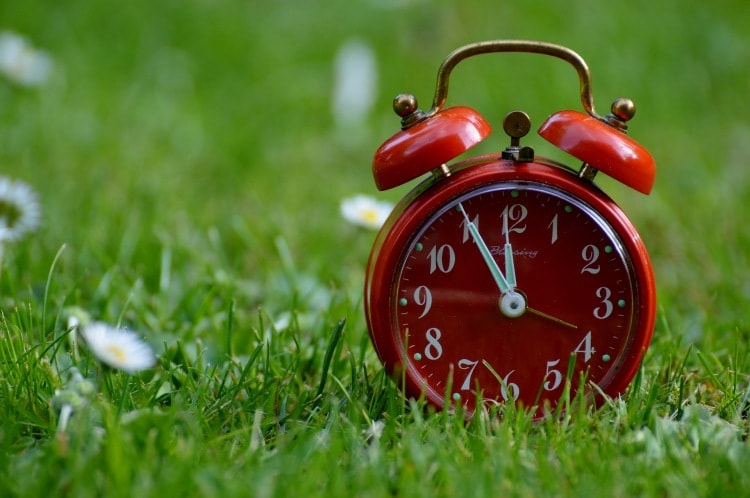 Alarm clock on grass