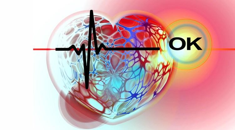 Srdce s normálním EKG - kresba