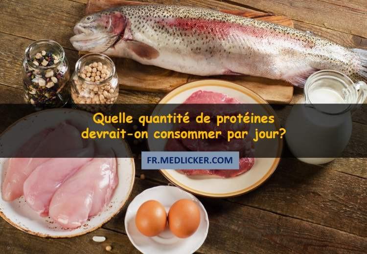 L'apport en protéines – Quelle quantité de protéines devrait-on consommer par jour?