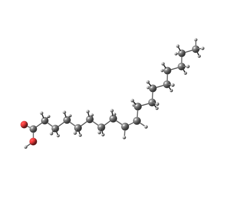 Řetězec mastných kyselin