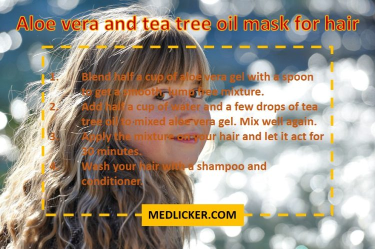 Aloe vera and tea tree oil mask for hair