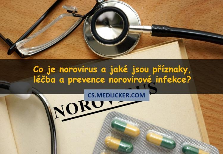 Norovirus: co to je, jak se projevuje a léčí