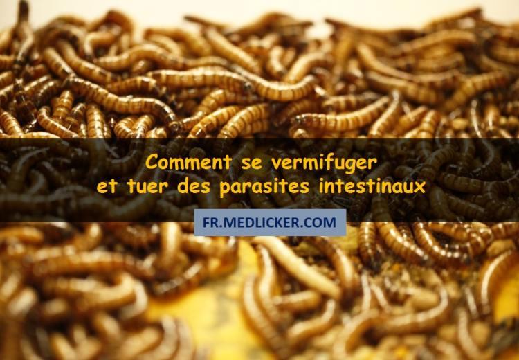 Les vermifuges humains: Comment se débarasser des parasites et vers intestinaux?