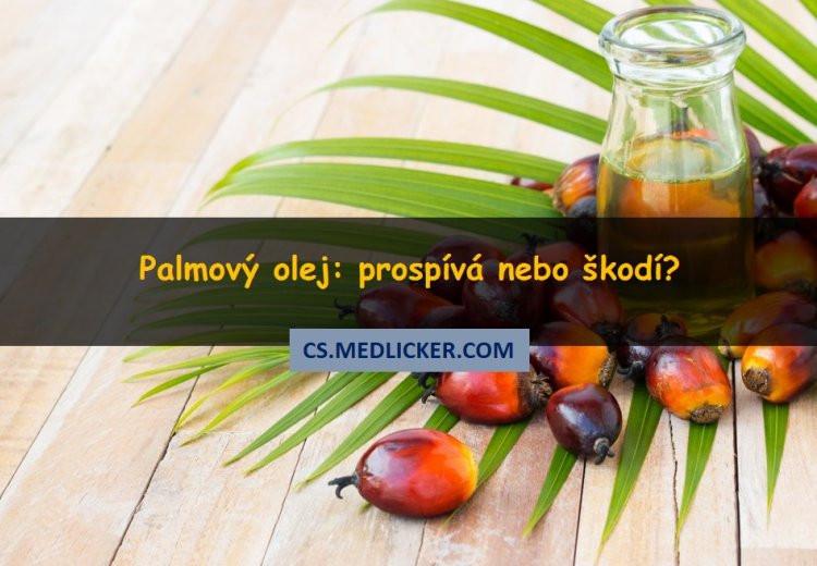 Škodlivost palmového oleje: pravda nebo nesmysl?
