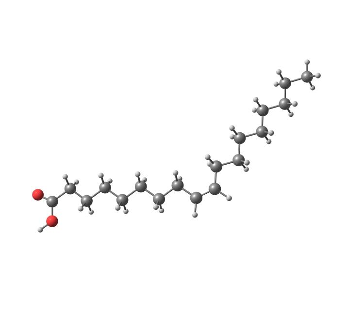 Structure des acides gras (acides carboxyliques à chaîne)