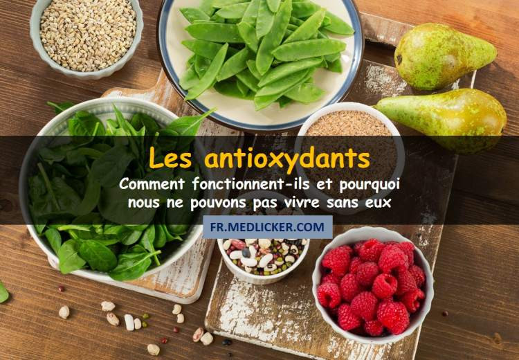Les antioxydants expliqués en termes compréhensibles
