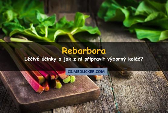 Co je rebarbora, jaké jsou její léčivé účinky a jak jí použít?