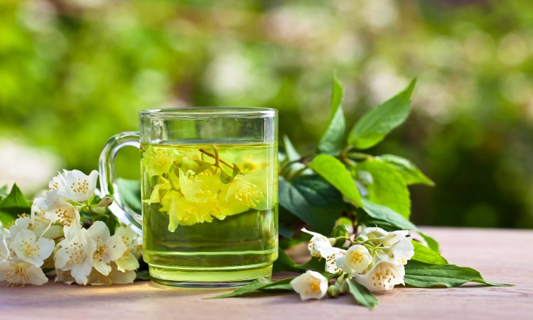 Le thé vert accélère le métabolisme