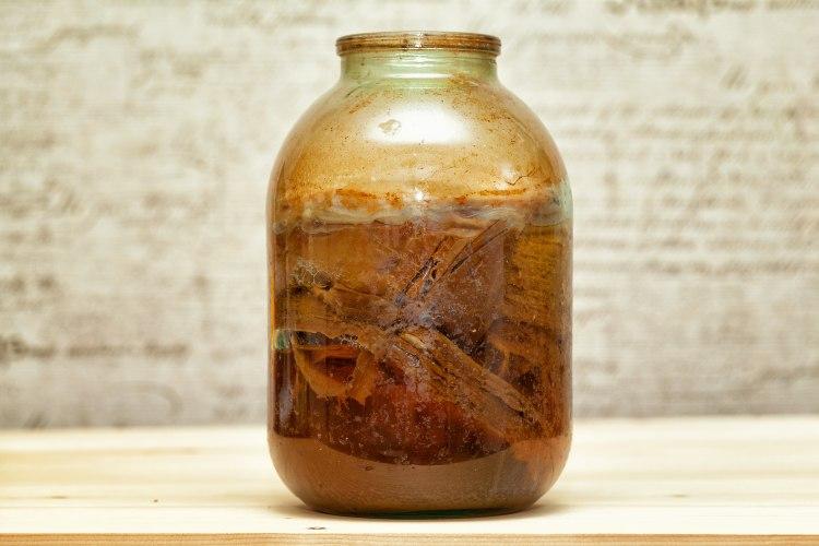 Le kombucha contient beaucoup de probiotiques