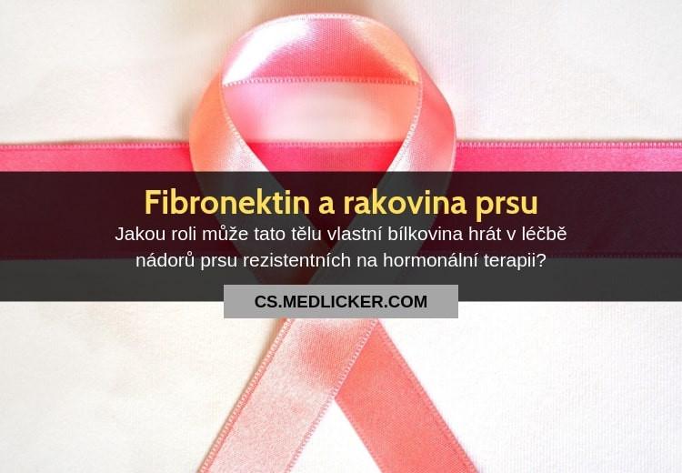 Fibronektin se může stát klíčem k léčbě rakoviny prsu, která nereaguje na hormonální léčbu