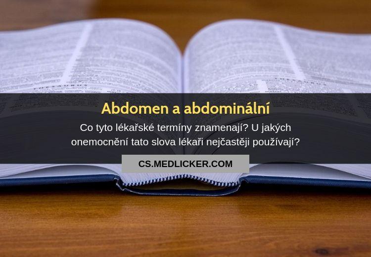 Význam pojmů abdomen a abdominální vmedicíně?