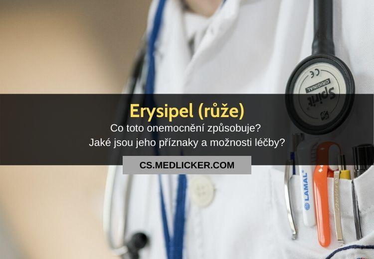 Růže (erysipel): vše co potřebujete o této nemoci vědět