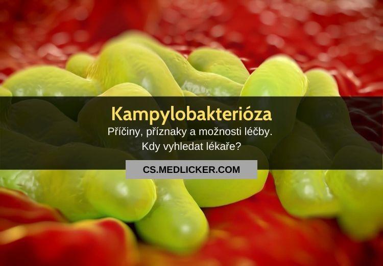 Kampylobakterióza: vše co potřebujete vědět