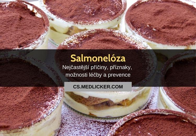 Salmonelóza (salmonela): vše co potřebujete vědět
