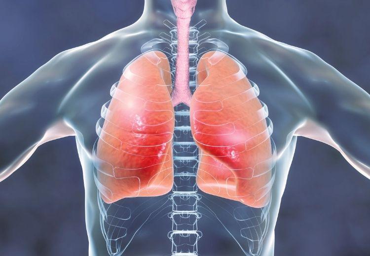 Onemocnění plic a pleury mohou způsobit bolest v levém podžebří