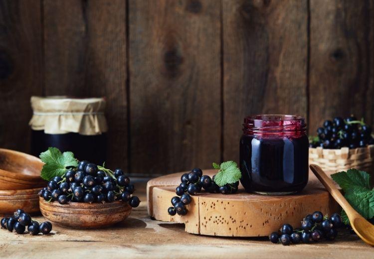 Čierne ríbezle sú bohatým zdrojom mnohých vitamínov a živín