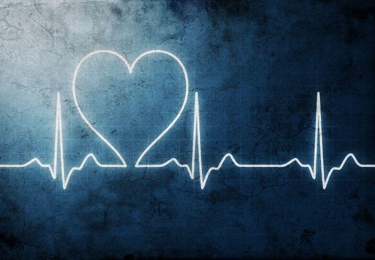 Psyllium pomáha chrániť pred ochorením srdca a ciev