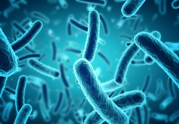 Bakteriálne a vírusové infekcie sú častou príčinou škrabania v hrdle