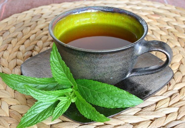 Na zklidnění podrážděného žlučníku fungují i některé bylinkové čaje, například z máty peprné nebo řepíku lékařského