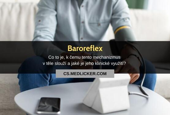 Baroreceptory a baroreceptorový reflex (baroreflex): vše co potřebujete vědět