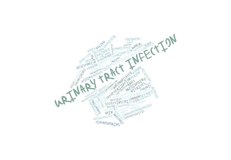 Natural Treatment Options to Cure Urinary Tract Infection
