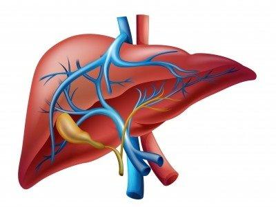 Erytrohepatální porfyrie: příčiny, příznaky, diagnostika a léčba