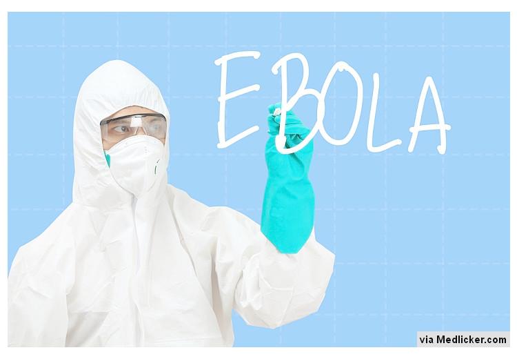 Proti Ebole možná budeme moci využít již existující léky