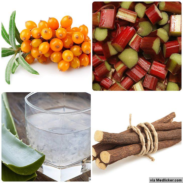 Herbal remedies for constipation - Rhubarb, Licorice, Aloe Vera, Buckthorn