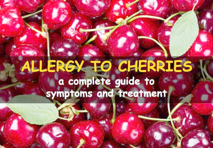 Allergy to cherries: symptoms and risks