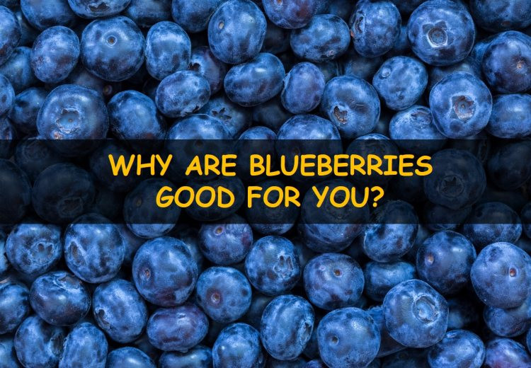 Why are blueberries good for you?