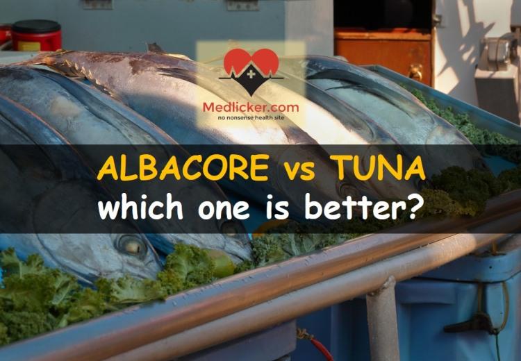 Albacore vs tuna