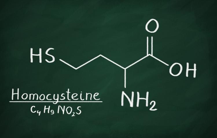 Homocystéine - structure chimique
